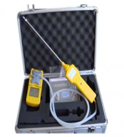 便携式气体检测仪的两个种类